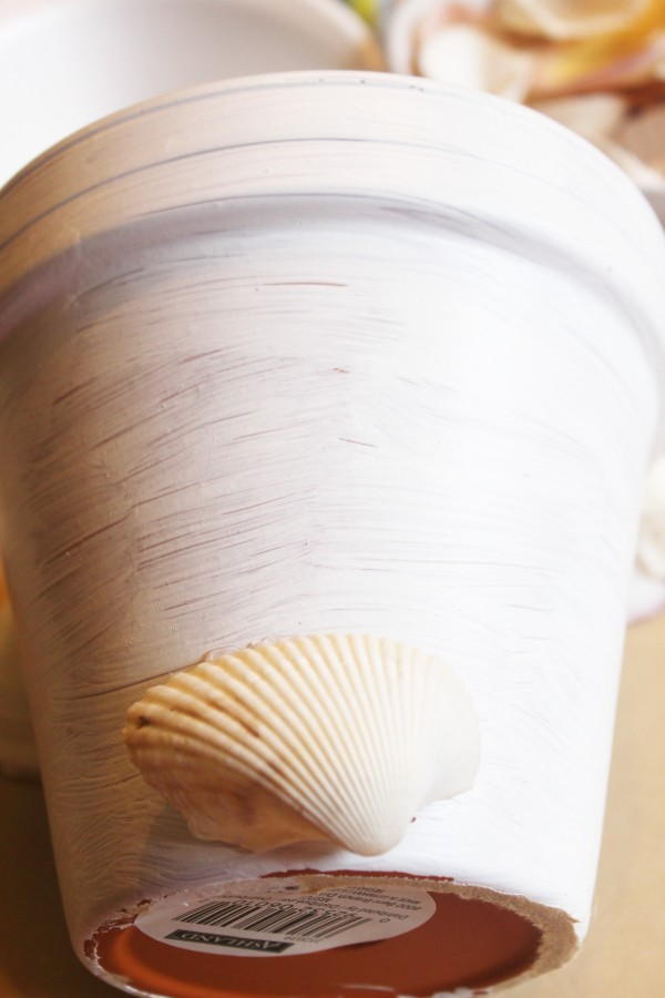 Adding Shells to a Painted Pot | The Everyday Home