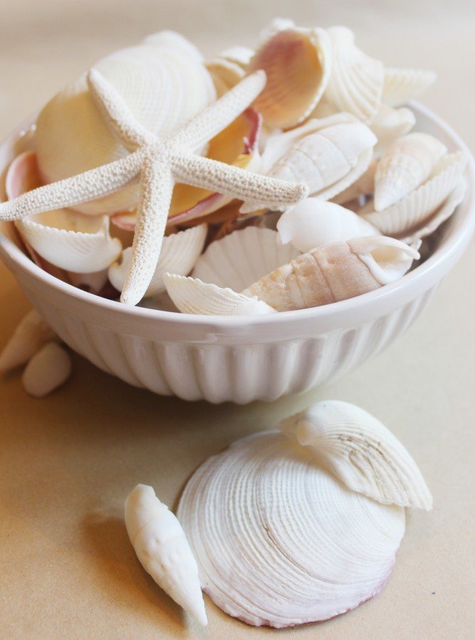 Bowl of Seashells | The Everyday Home