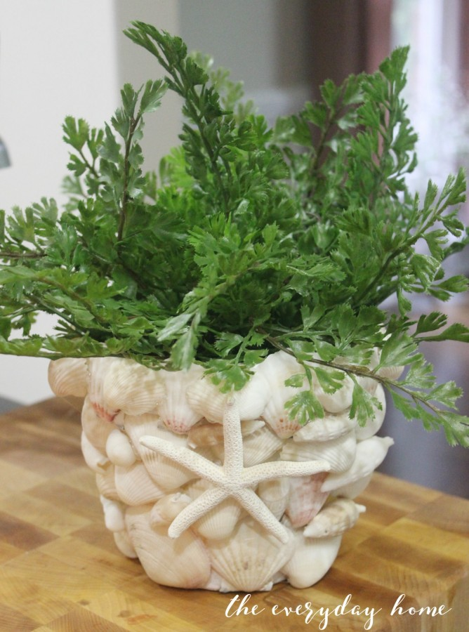 Shell Covered Terra Cotta Pot | The Everyday Home | www.everydayhomeblog.com