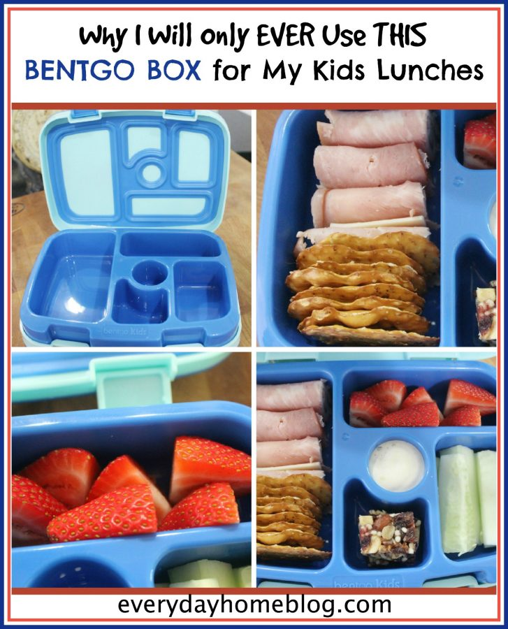Bentgo Box for Kids Lunch Box | The Everyday Home Blog | www.everydayhomeblog.com