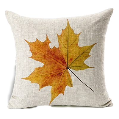 fall-leaf_clipped
