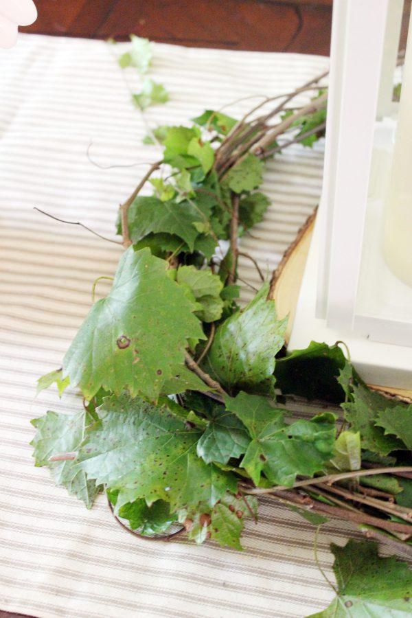 Creating-a-Wreath-with-Fresh-Grapevine | The Everyday Home | www.everydayhomeblog.com