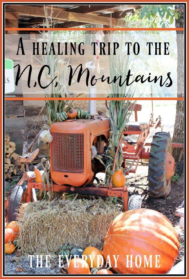 a-trip-to-the-nc-mountains | The Everyday Home | www.everydayhomeblog.com