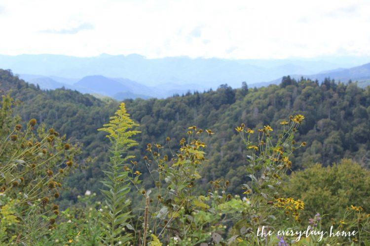 blue-ridge-parkway-nc-mountains | The Everyday Home | www.everydayhomeblog.com