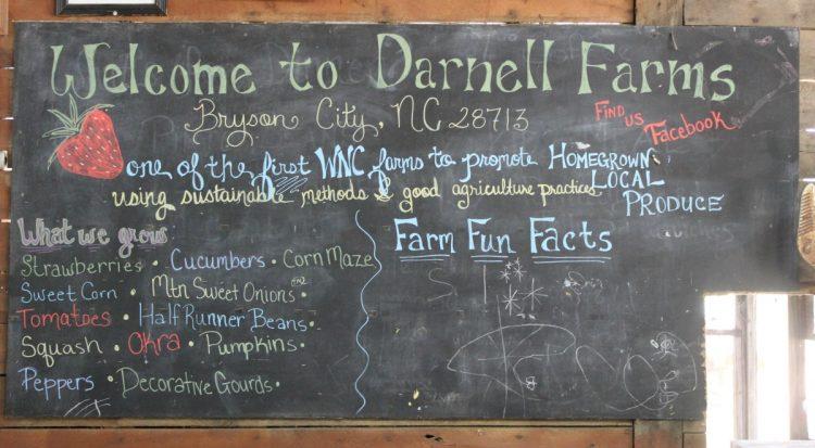 darnell-farms-bryson-city-nc | The Everyday Home | www.everydayhomeblog.com