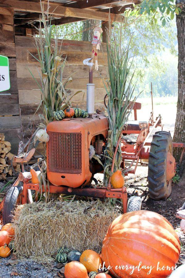 old-orange-tractor | The Everyday Home | www.everydayhomeblog.com