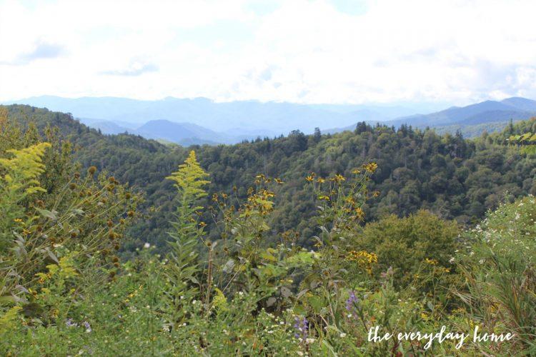 the-blue-ridge-nc-mountains | The Everyday Home | www.everydayhomeblog.com