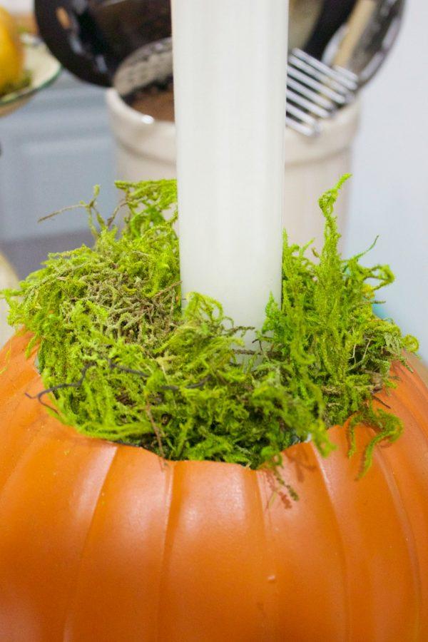 moss-base-in-pumpkin-candleholder-planter | The Everyday Home | www.everydayhomeblog.com