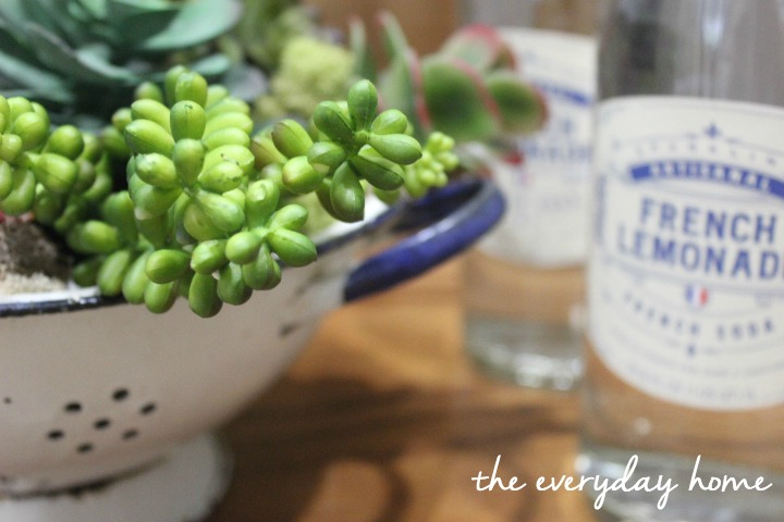 Succulent Containers || The Everyday Home || www.everydayhomeblog.com