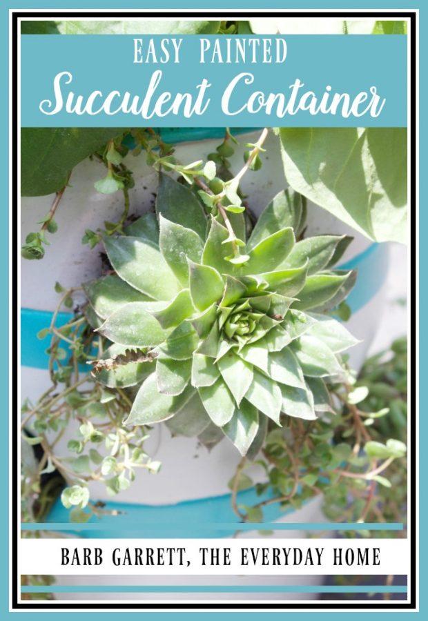 Easy Succulent Container Garden