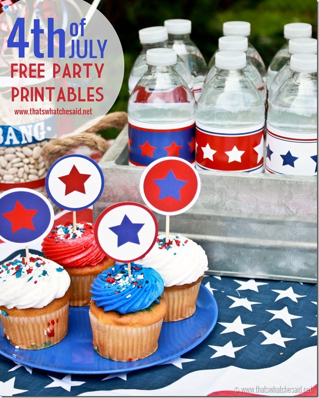 35+ Patriotic July 4th Projects, Recipes and Party Ideas || The Everyday Home || www.everydayhomeblog.com