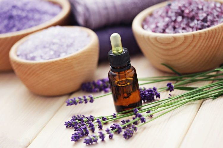 Lavender: One of the 3 Essential Oils Every Home Should Have | The Everyday Home