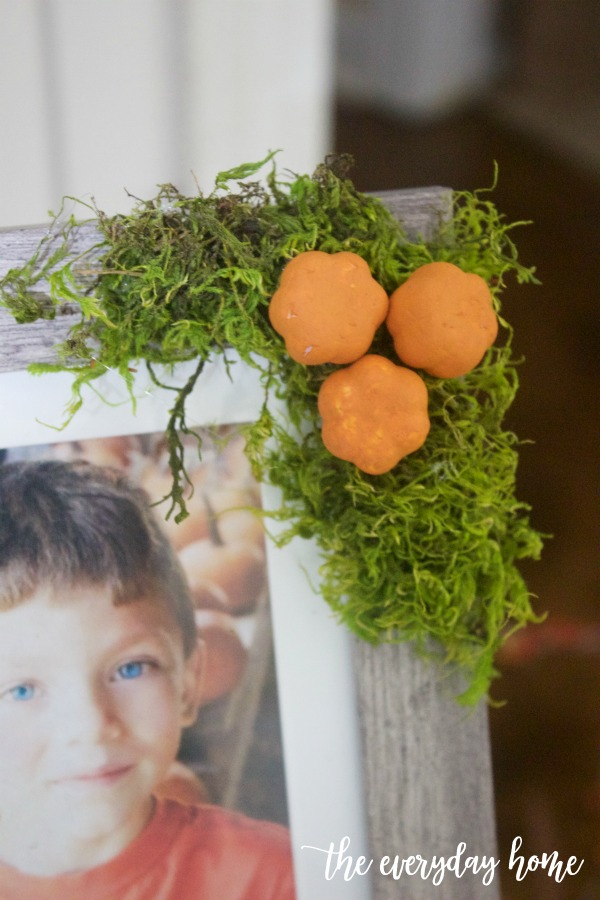DIY Acorn Mini Pumpkin and Moss Picture Frame | The Everyday Home