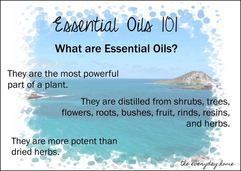 Essential Oils in the Home | the everyday home