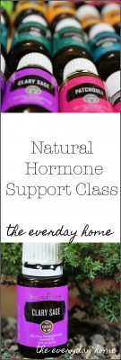 The Natural Hormone Support Class | the everyday home